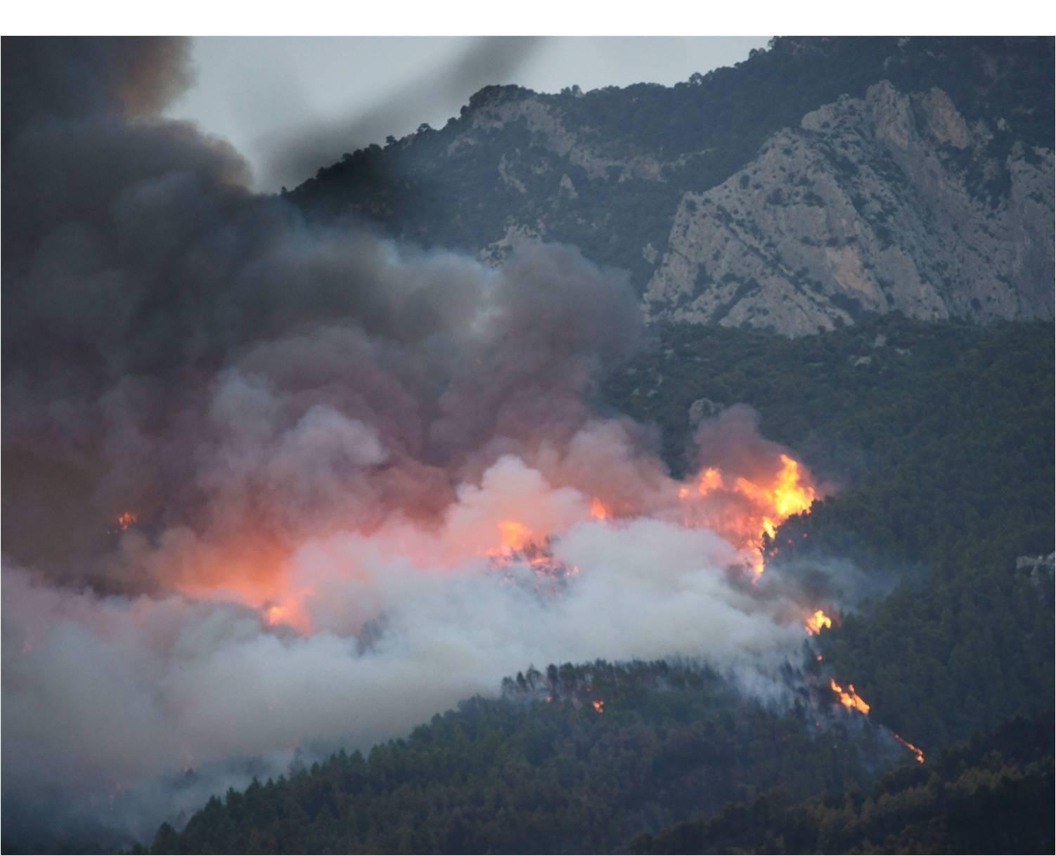 Incendi Forestal. Riu Canaletes i tributaris. Horta de Sant Joan. Juliol 2009