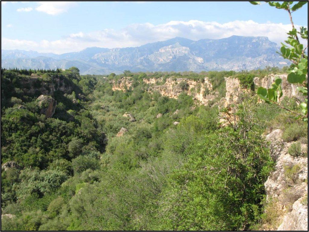 Recuperació ambiental del Barranc de Sant Antoni