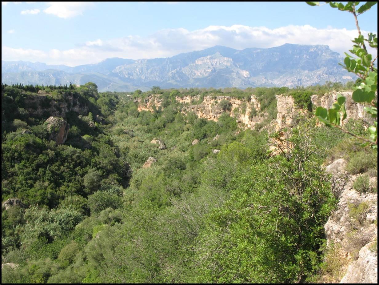 Barranc de Sant Antoni