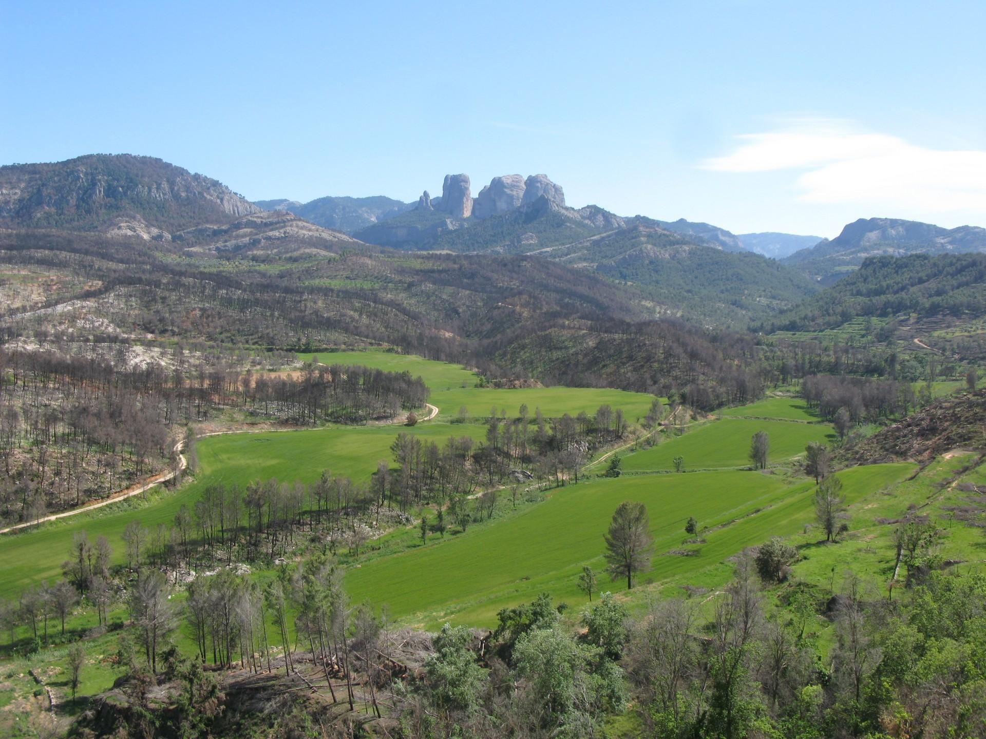 La Vall dels Reguers. La Bellida