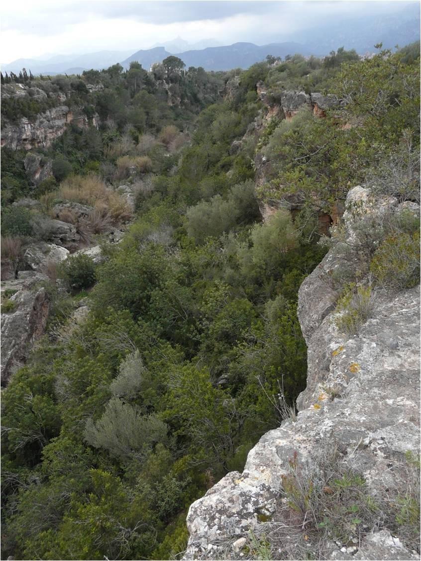 Barranc de Sant Antoni. Los Tolls.