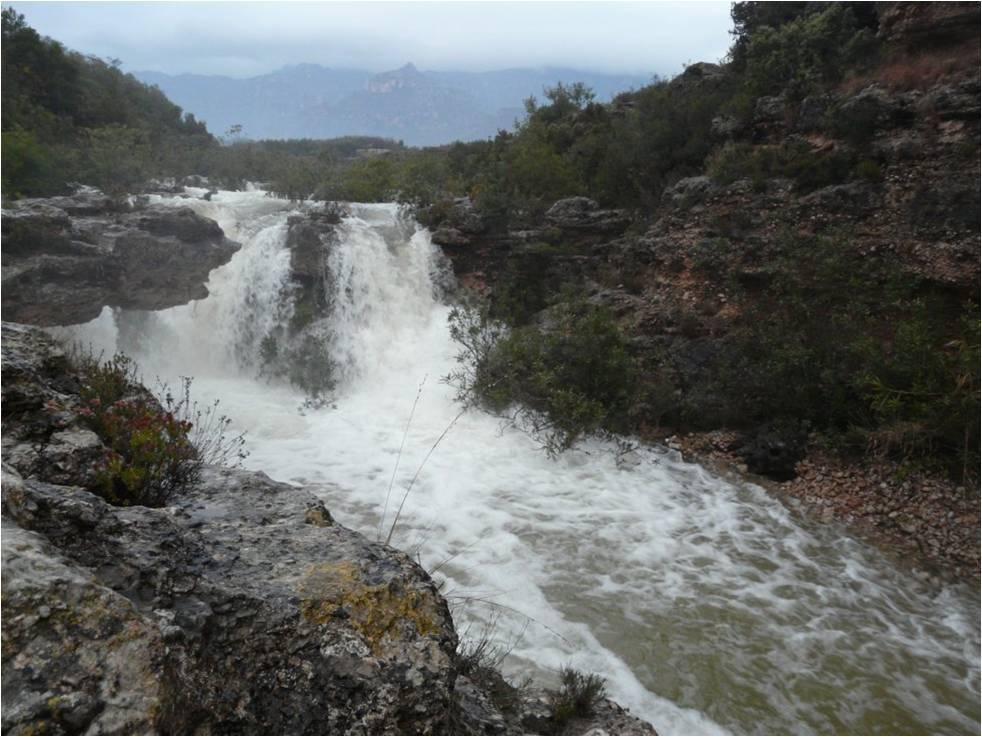 Barranc de Sant Antoni, riu mediterrani de cabal variable