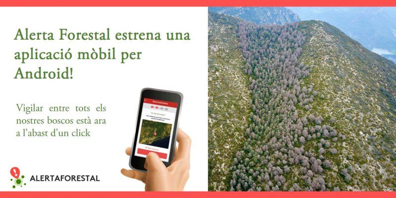 Alerta Forestal App mòbil