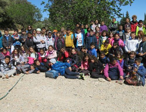 L' Escola  de Roquetes participa al Projecte La Xarxa Natura et protegeix!!!