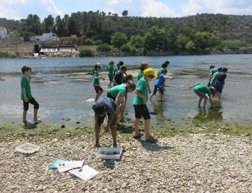 La Xarxa Natura et protegeix. Excursió a Tivenys de l'alumnat de l'escola Sant Llatzer