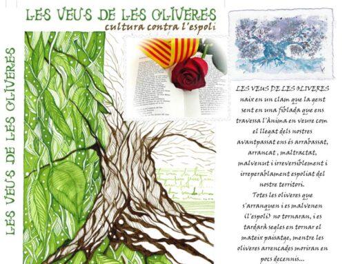Les veus de les oliveres al Sant Jordi d'Estiu. 23 de juliol 2020