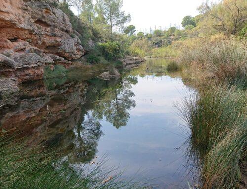 Recuperació fluvial i custòdia del Barranc de Santes Creus